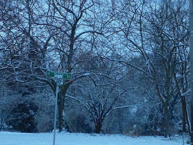 snowy seattle 12-13